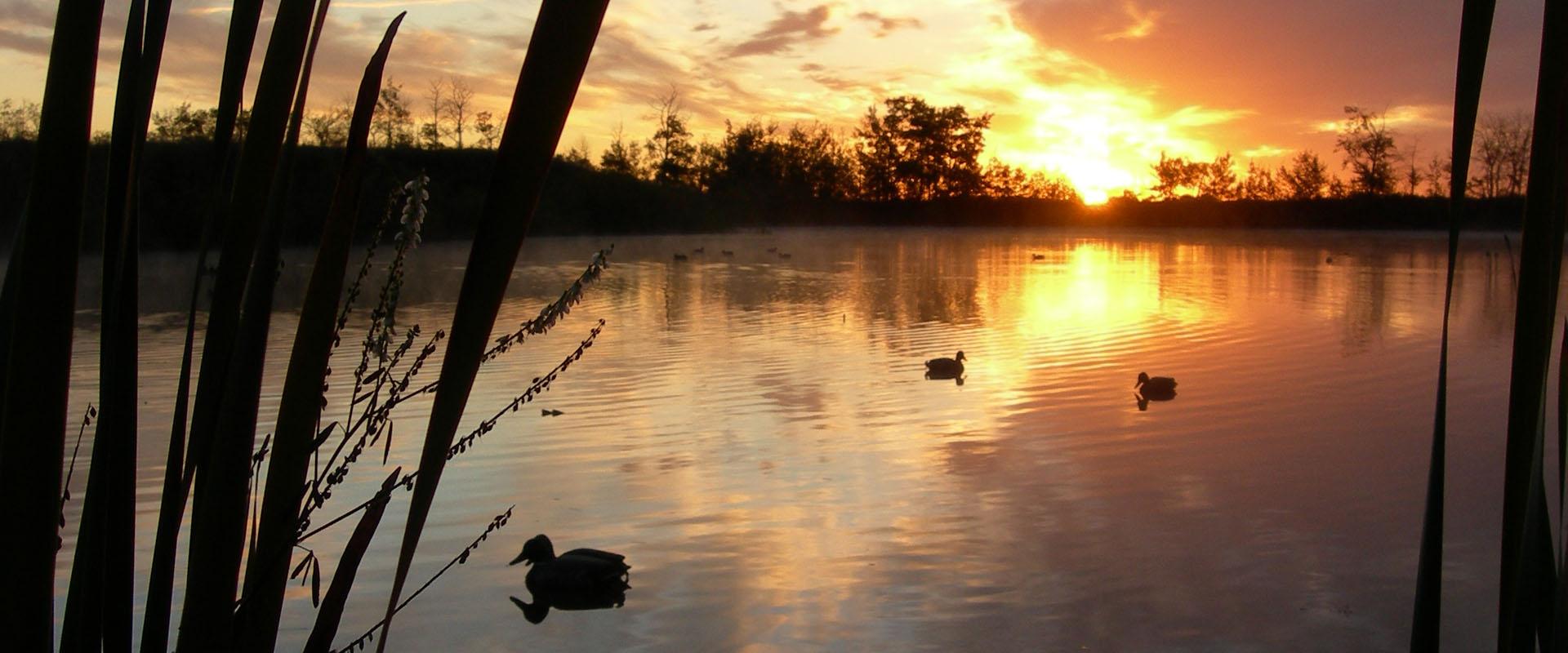 venture north waterfowl hunting alberta canada