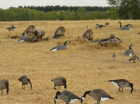 waterfowl hunting Venture North Outfitting